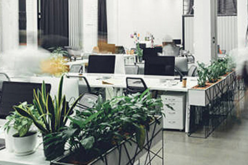 daily-office-clean